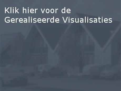 gerealiseerde_visualisaties